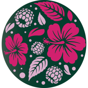 Pure Tea Selection HIBISKUS-MALINA